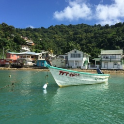 tobago - pirates bay 2