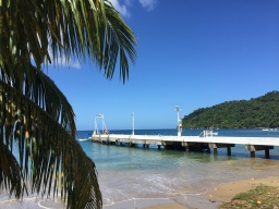 tobago - pirates bay 4