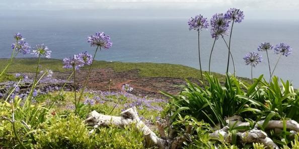 Pico Sao Gorge